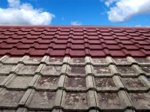 Melbourne Roof Cleaning